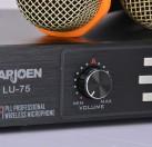 YARJOEN LU-75一托二无线麦克高保真真分集